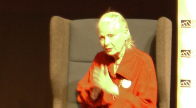 Fashion Continuum: Dame Vivienne Westwood and Climate Change
